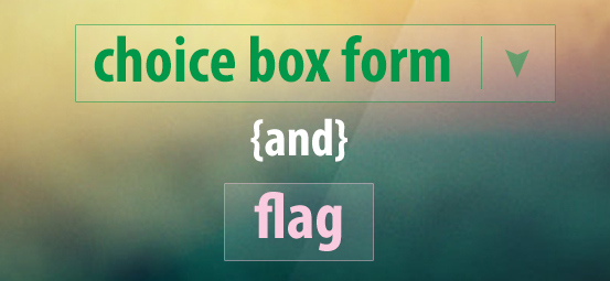flag and choice box form