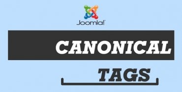 How to use Canonical URLs in Joomla 3